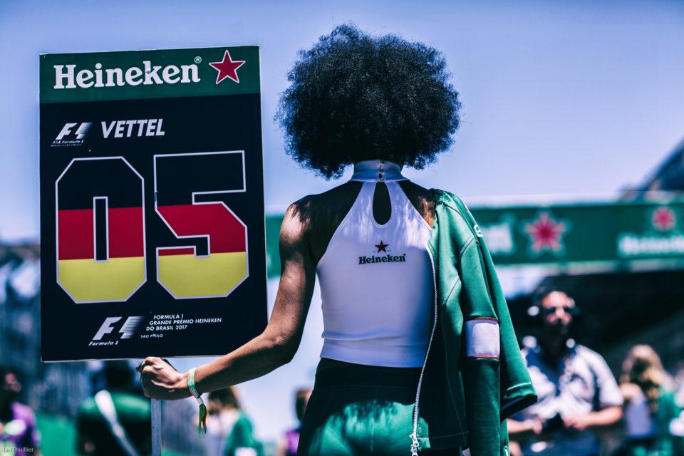Formula 1 2017: Brazilian Grand Prix by Ian Thuillier.